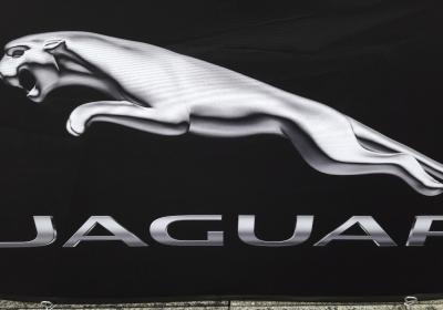 Jaguar Trophy 1